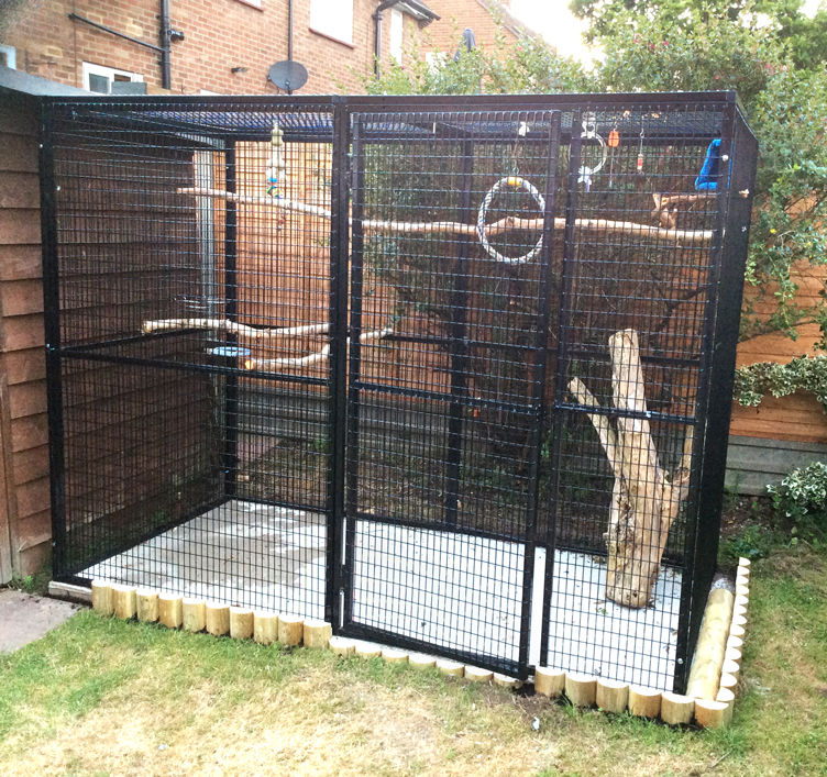 barrys aviary and- play pen