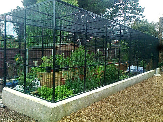 Fruit and vegetable cage