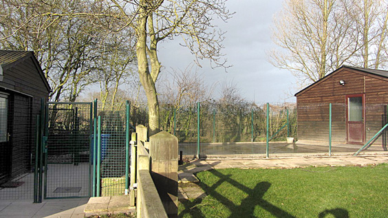 metal fencing and posts image