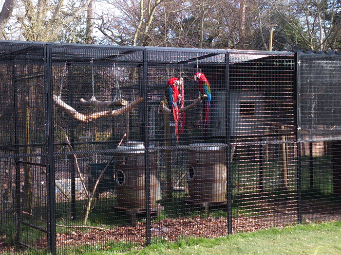 Parrot Cage in Zoo