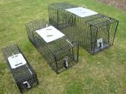 Rabbit Traps For Sale