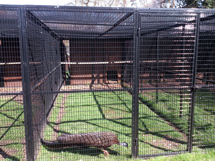 Animal Cages For Zoos