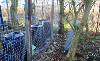 Wire Mesh Chicken run