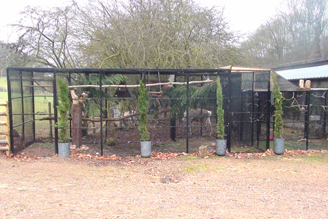 Outdoor Aviary for Owl and Reindeer